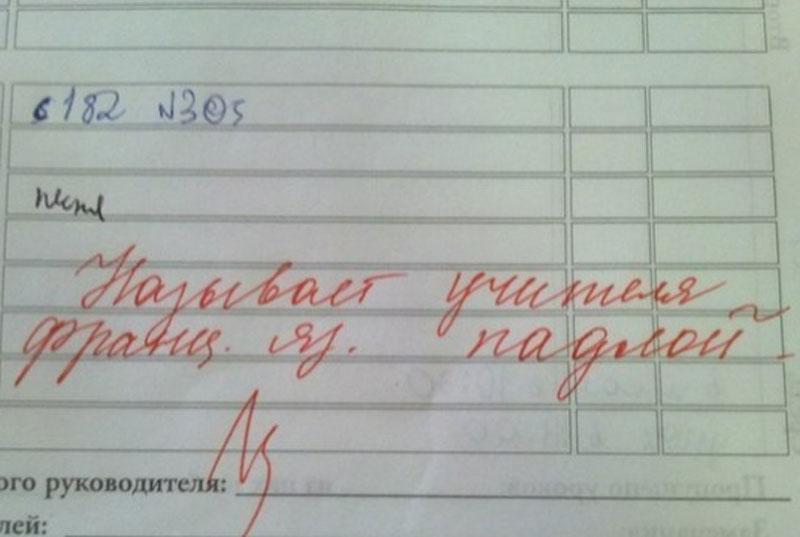Ягодка опять, прикольные картинки школьного дневника